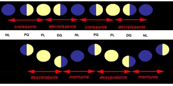 Lune montante et descendante 28 images lune montante et descendante etre en phase avec la - Lune montante et descendante ...